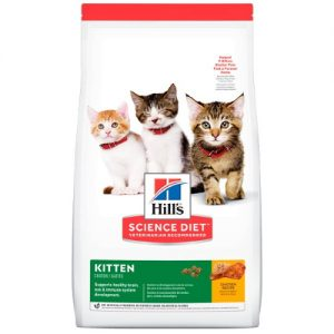 Hills Kitten Healthy Development